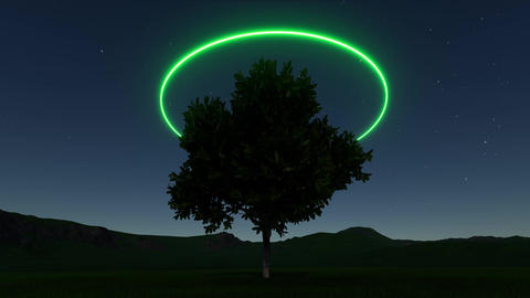 Tree neon ring in abstract style on deep stars. Modern science background. Neon Live Action