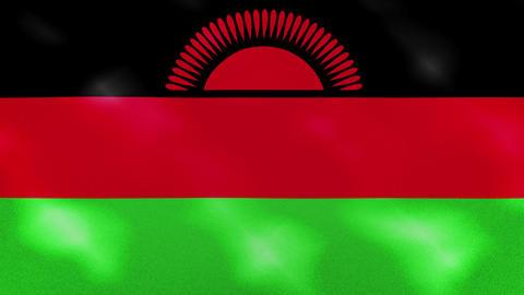 Malawian dense flag fabric wavers, background loop Animation