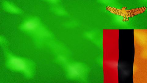 Zambian dense flag fabric wavers, background loop Animation