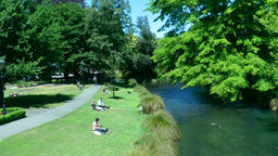 People relaxing in a park, Christchurch, New Zealand Footage