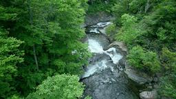 Mountain stream, Hokkaido, Japan Footage