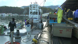 People working at fishing boat, Hokkaido, Japan Footage