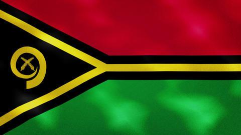 Vanuatu dense flag fabric wavers, background loop Animation