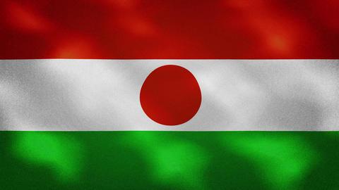 Niger dense flag fabric wavers, background loop Videos animados