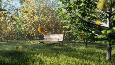 Autumn Color Park. View of colorful autumn trees on a Sunny autumn day. A lonely Park bench. Fly Animation