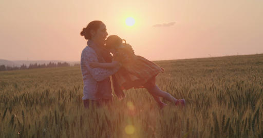 Mother and little girl playing together in a green wheat field during sunset Footage