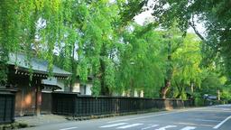 Kakunodate Samurai Residence, Akita Prefecture, Japan Footage