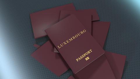 Artist rendering Luxembourg travel passport Animation