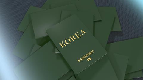 Artist rendering Korea travel passport Animation