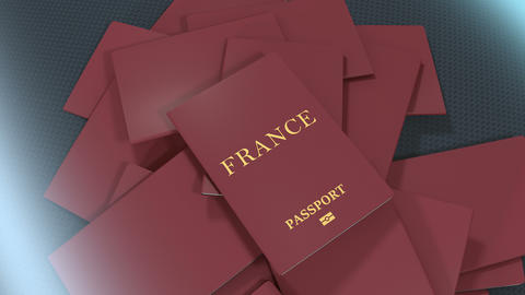 Artist rendering France travel passport Animation