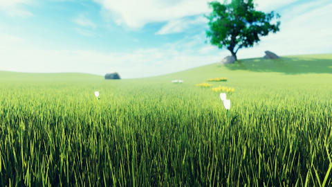 Beautiful video of morning green grass, tree in the background, flowers, morning sun and clouds on Animation