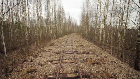 Abandoned narrow gauge railway in the forest, autumn day ライブ動画