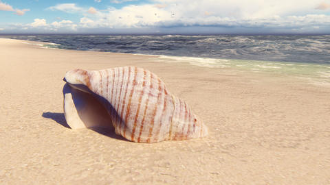 Beautiful seashell on a sandy beach, washed by the ocean wave. Beautiful loop 3D animation Animation