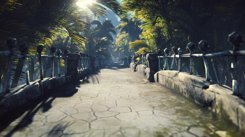 The abandoned stone bridge in the tropical jungle in the middle of palm trees and tropical Animation