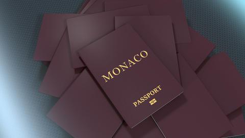 Artist rendering Monaco travel passport Animation