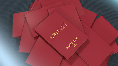Artist rendering Brunei travel passport Animation
