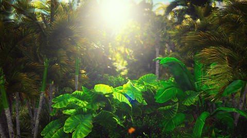 Flying through the green jungle.Green jungle trees and palm trees with blue sky and bright sun. The Animation