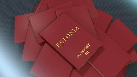 Artist rendering Estonia travel passport Animation