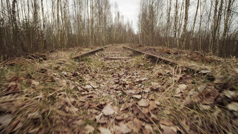 Abandoned narrow gauge railway in the forest, autumn day, low angle view Acción en vivo
