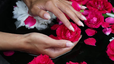 Female hands and flower petals in a water bowl. 4K Footage ライブ動画