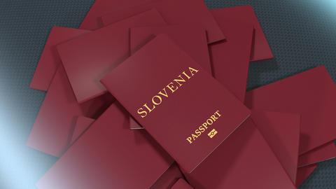 Artist rendering Slovenia travel passport Animation