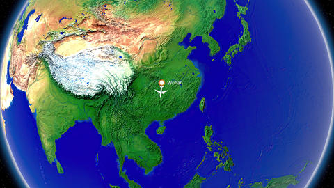 Flight from Wuhan to Singapore Animation