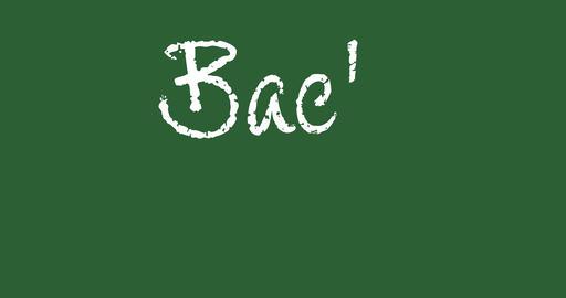 Back to School text written in chalk on green blackboard Animation