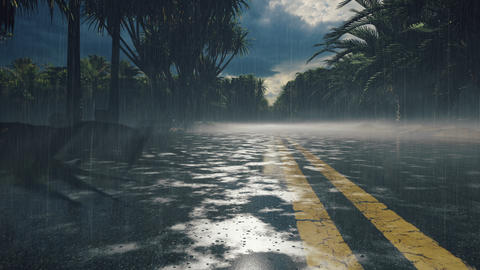 Drops of water fall into a puddle on the highway. Wet road in the rain, rainy highway with splashes Animation