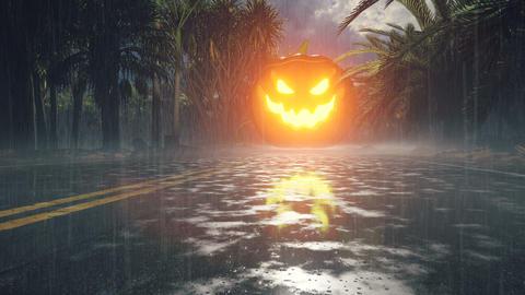 Glowing in the dark pumpkin, dark forest, Halloween celebration. Night landscape with mystical fog, Animation
