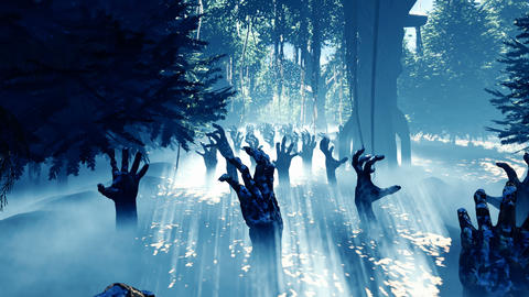 Dark mysterious misty forest landscape. Dead zombie hands reach out from the ground, steam rises Animation