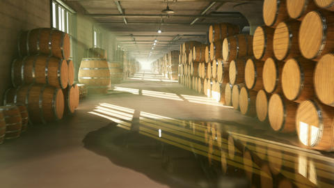 Warehouse with barrels for wine, whiskey or other alcohol. Barrels lying in several rows. Looped Animation