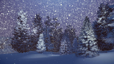 Magical winter night in a snowy spruce forest Animation