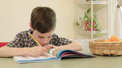 Young boy preparing homework Footage