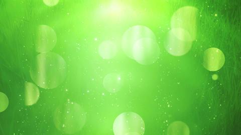 Green Environmental Design Background Animation