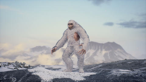 Sasquatch in the snowy mountains on a beautiful fog winter morning. Bigfoot in the mountains Animation