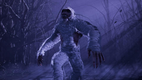 Bigfoot runs through a misty mystical forest at night. The Yeti is walking in a dark scary forest Animation