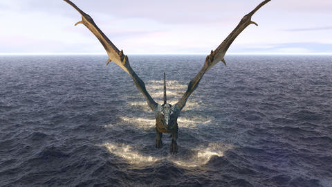Realistic big dragon takes off over the morning ocean. Animation for fabulous, fiction or fantasy Animation