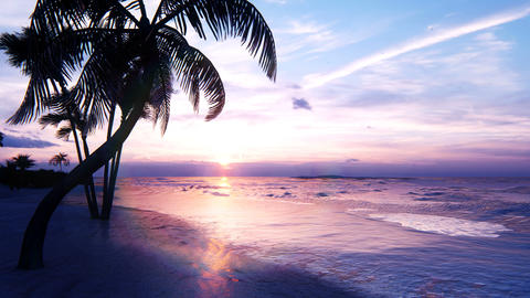Beautiful sunset over the endless evening ocean. Blue sky, yellow sun, palm trees, endless sea and CG動画