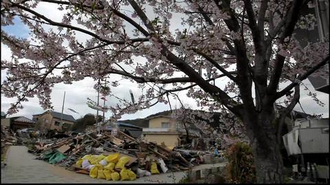 11tsunami japan Footage