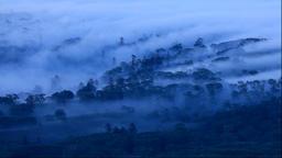 Morning mist at Koshimizu pass in Hokkaido Footage