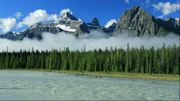 Rocky mountains and conifer trees along the Athabasca River, Canada Footage