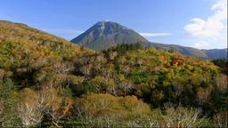 Autumn leaves at Shiretoko Pass and Mount Rausu, Hokkaido, Japan Footage