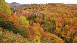 Towada-Hachimantai National Park in autumn, Akita Prefecture, Japan Footage