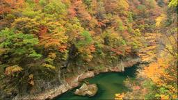 Dakigaeri Valley in autumn, Akita Prefecture, Japan Footage