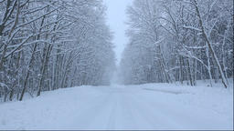 Snowy forest road in the Kushiro area of Hokkaido Footage
