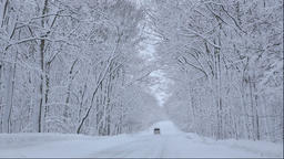 Car on snowy forest road in the Kushiro area of Hokkaido Footage