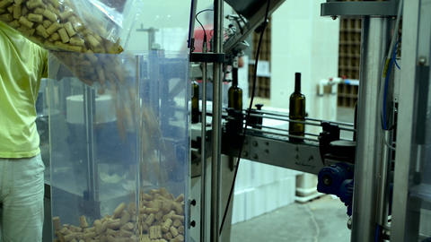conveyor with wine bottles at wine factory, wine stopper add to line ライブ動画
