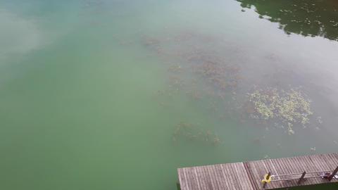 Aerial video filming of wooden pier on the lake Acción en vivo