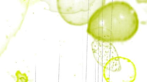Film noise overlay 06 Animation