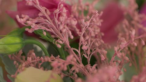 Dried Flowers Floristics GIF